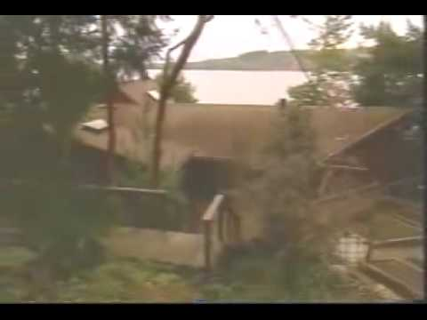 Download (2003) The Iboga Therapy House - CBC's The National - Part 1