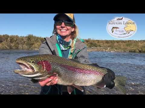 Fly Fishing Trophy Rainbow Trout On The  Kvichak River, Alaska