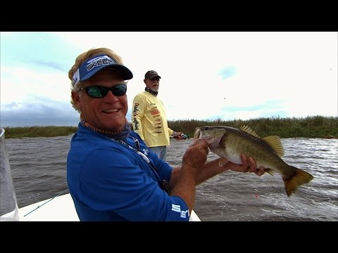 Lake Okeechobee Bass Fishing and Catfishing with Live Shiners