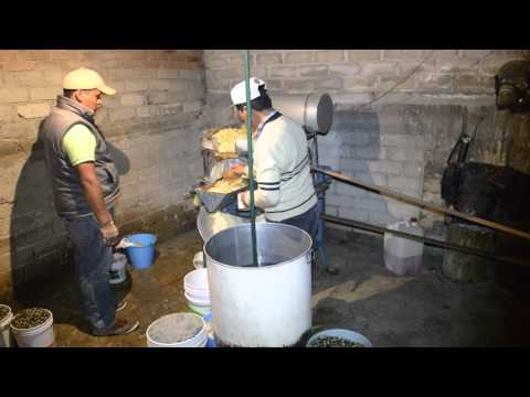 What makes the best tortillas in Mexico?