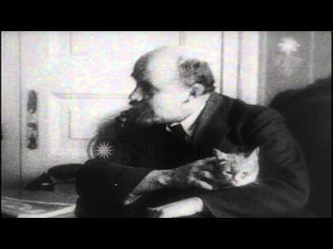 Bolshevik leader Vladimir Lenin sitting at his desk with his cat in his lap, afte.HD Stock Footage