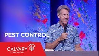 Pest Control - Philippians 1:15-18