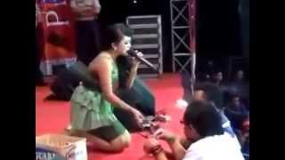 Video Dangdut Koplo 2014 Terbaru New Palapa - Tutupe Wirang Demy - Vivi Rosalita download MP3, 3GP, MP4, WEBM, AVI, FLV Desember 2017