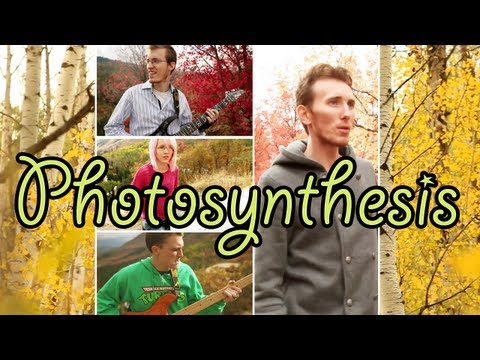 Bloom - Photosynthesis (Official Music Video) - Photosynthesis