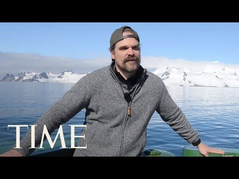 Join Stranger Things' David Harbour On His Journey To Dance With Penguins In Antarctica | TIME