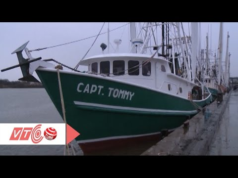 Tàu đánh cá triệu đô của người Việt ở Texas, Mỹ | VTC