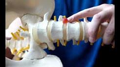 hqdefault - Gravity Inversion Back Pain