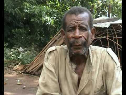 DEFORESTATION IN CONGO