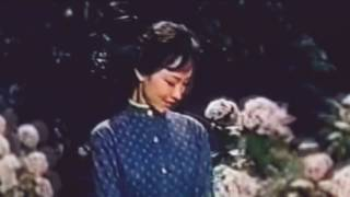 石坂洋次郎文学作品。