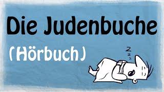 DIE JUDENBUCHE [Hörbuch]
