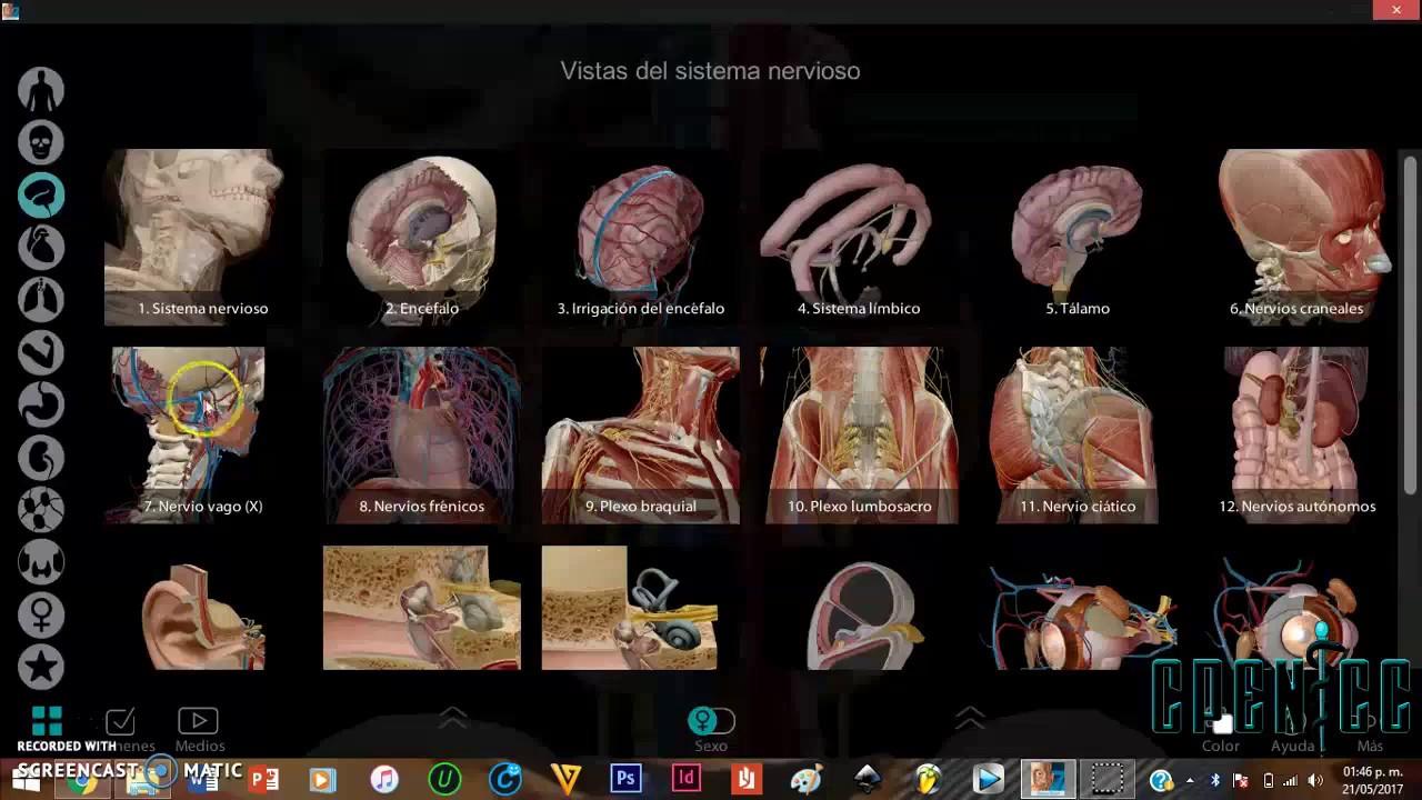 ATLAS DE ANATOMIA HUMANA || CPENICC - YouTube