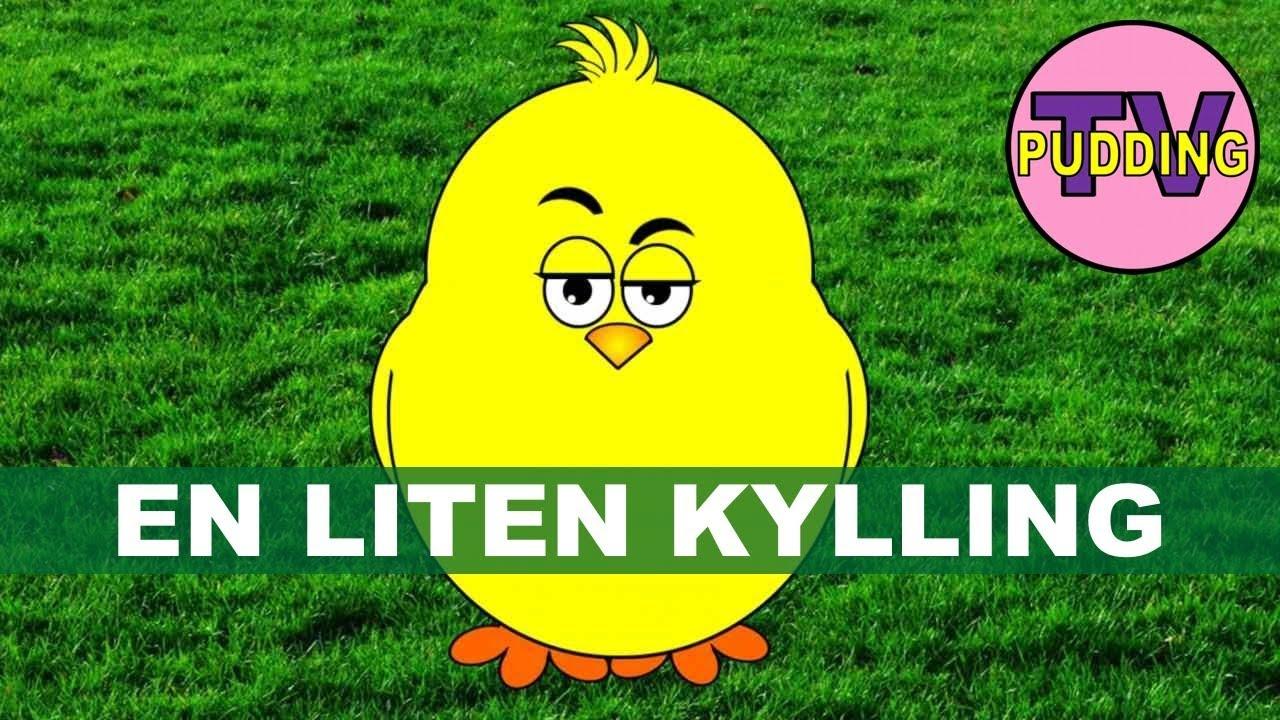 liten kylling i egget lå