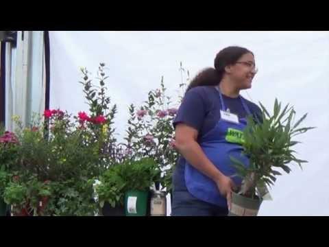 07 11 15 Herb Garden Designs
