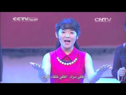 Chinese TV in Arabic