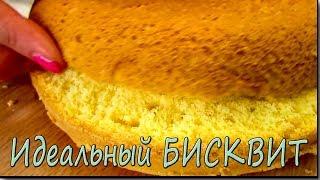 Рецепт Идеального БИСКВИТА, который подойдет под любой торт. Бисквит в мультиварке