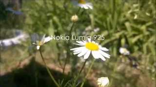 Видео снято на Nokia Lumia 925(Видео снято на телефон Nokia Lumia 925. Программа редактор видео - Windows Movie Maker. Песня - Koobra feat. Joanna -- Something Real. Выбирайт.., 2014-06-23T18:49:43.000Z)