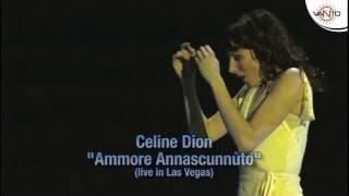CELINE DION canta in Napoletano - AMMORE ANNASCUNNUTO (Live in Las Vegas)