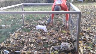 まるで犬みたい?落ち葉遊びが大好きなウサちゃん
