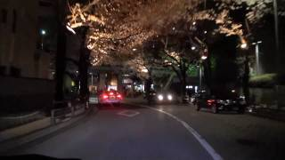 六本木アークヒルズを周遊している桜のトンネルの車載動画です。Japanes...