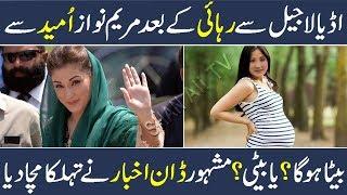 Maryam Nawaz Pregnant Or Not | Breaking News | Nawaz Sharif | Imran Khan | Bushra Bibi | Urdu