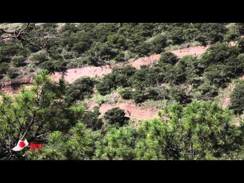 XIX Ultramaratón de los Cañones, Guachochi 2015