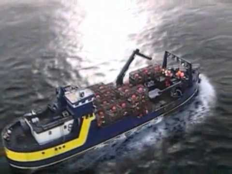 DESASTRES MARINOS, marine disasters.