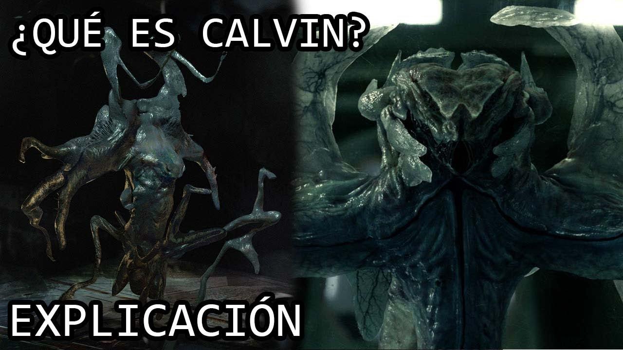 Life Calvin