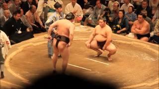 Combat de sumo à Tokyo Juin 2014