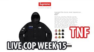 0d58131fe Куртка The North Face Supreme