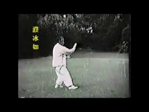 Pu Bing Ru  - forme courte yang - 1ère femme disciple de yang cheng fu