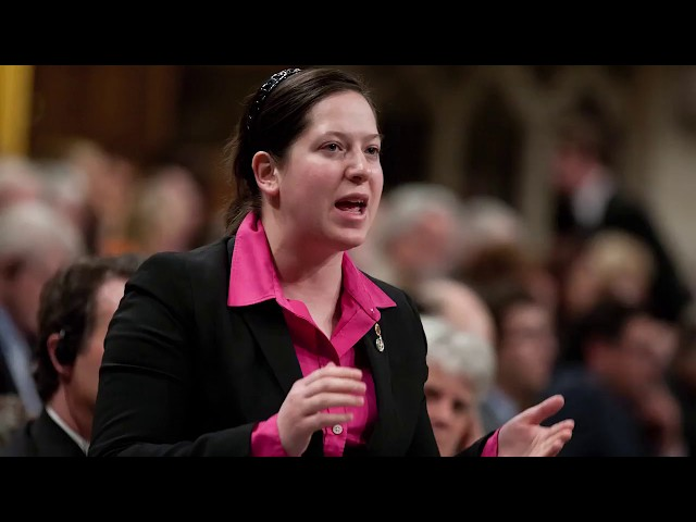 After New Democrat Christine Moore's suspension following a sexual misconduct claim, fellow NDP MPs say no party is immune from the issue. An Afghanistan war veteran says Moore engaged in inappropriate sexual behaviour. (The Canadian Press)