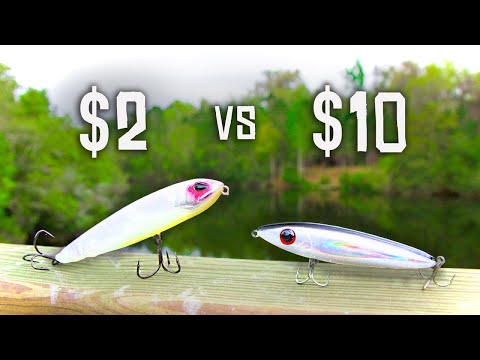 CHEAP Vs EXPENSIVE Topwater Fishing CHALLENGE!!! (HUGE BASS)