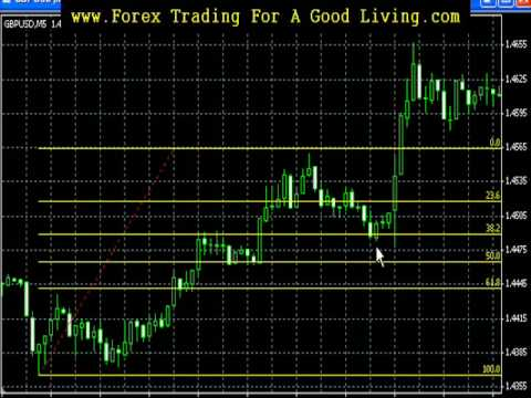 Fibonacci forex trading youtube