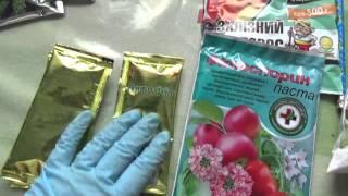 #272.очередной заказ для цветов,доставлен(, 2016-03-15T20:48:21.000Z)