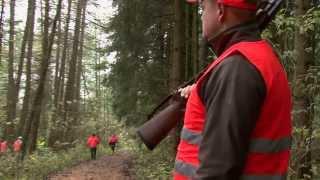 Treibjagd Puchheim 2013