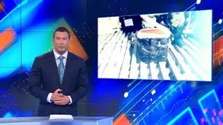 Пограничники Магадана изъяли тонну контрафактной черной икры