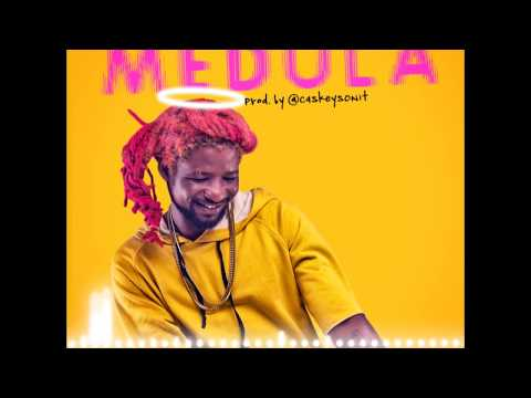 Rudebwoy Ranking - Medula (Audio Slide)