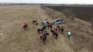 ПОЛЁТЫ (Flying). Конный пробег близ Нальчика. 04.02.2018г.