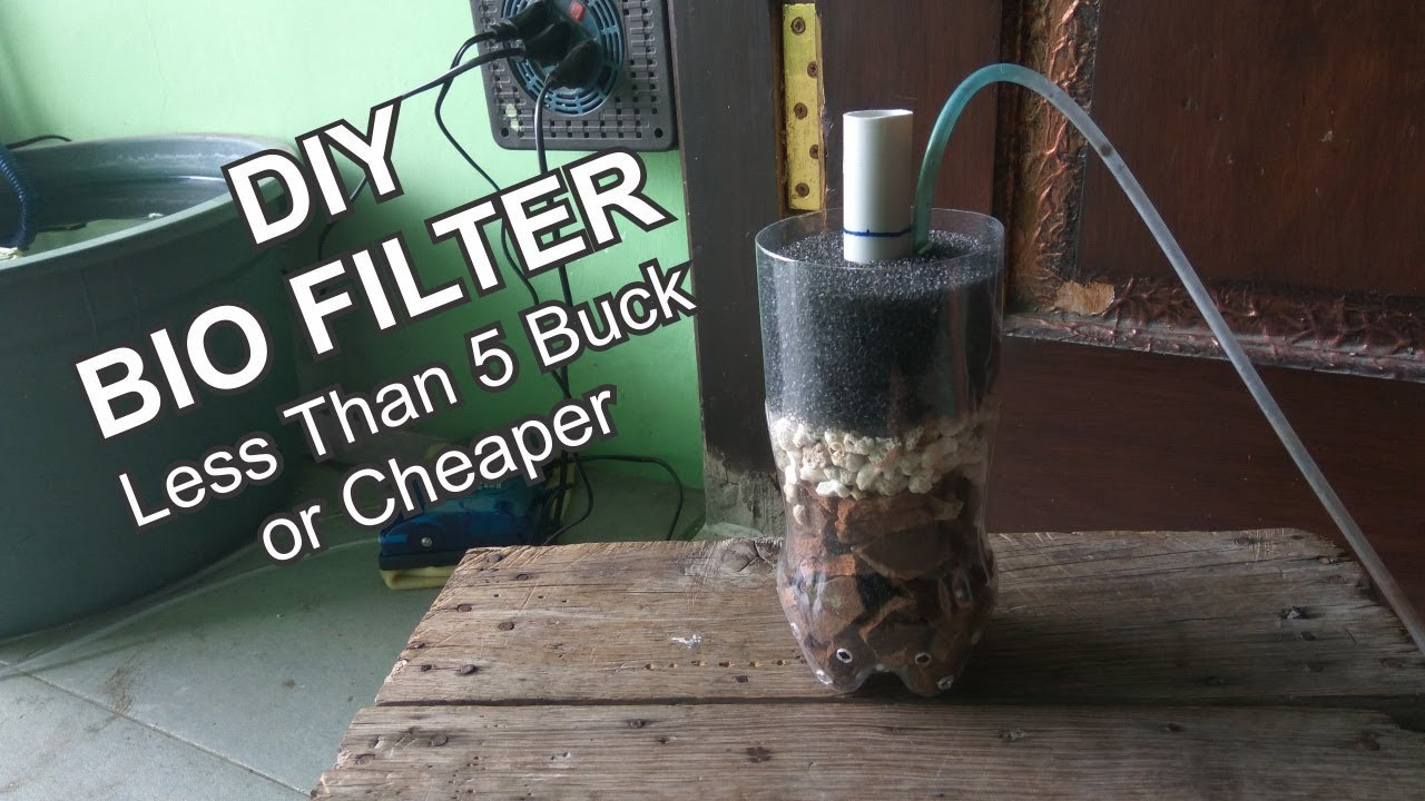 How to make cheap bio filter youtube for Pond filter sponge cheap