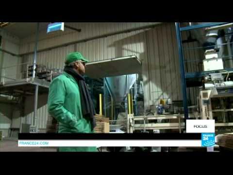 EU allows New GM 'supercorn' production - Focus