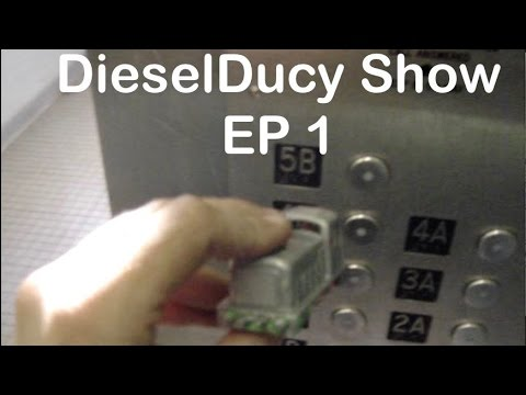 The DieselDucy Show Episode 1: DieselDucy Rides an elevator