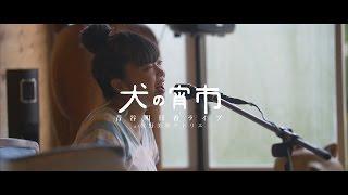 青谷明日香ライブat佐野美里アトリエ「犬の宵市」