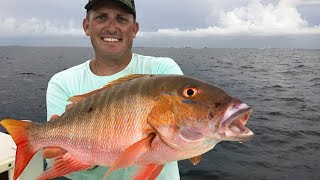 Mutton Snapper Catch Clean Cook! Tasty Tuesday! Deer Meat For Dinner!