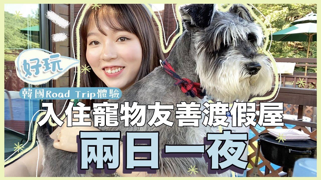 【韓國Road Trip之旅】孖住狗狗去渡假!獨立寵物游池渡假屋只需 $ XXX?! |ft. Liz&小巴西