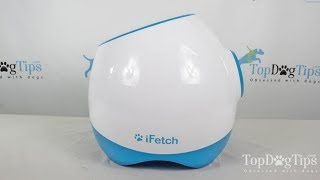 Ifetch Too Interactive Ball Launcher for Dogs Review (2018)