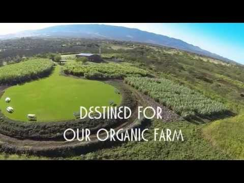 Ocean Vodka Organic Farm and Distillery - Come Fly with Us!
