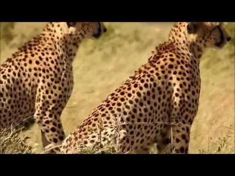 2015.07 Masai Mara Nakuru Aberdare