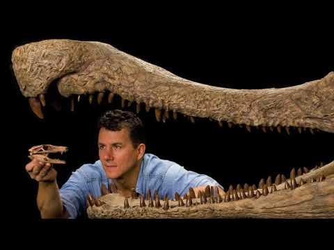 Paleontologist Finds Dinosaur in Oklahoma (2013-01-23)