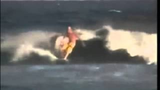 The Surfaris - Wipeout