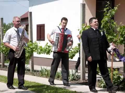 Árad a Tisza - Sirály Együttes letöltés